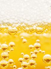 Saccharomyces cerevisiae – Die Bierhefe